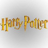 Harry Potter Hogwarts Fleece Fabric