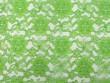 Wholesale Floral Lace - Avocado,  25 yards