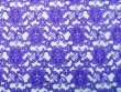 Floral Lace - Royal