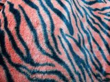Minky Animal Faux Fur - Tiger #20
