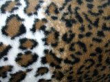 Minky Animal Print Fur - Striped Leopard, alternate view 1