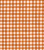 Oilcloth - Gingham Orange