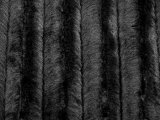 Wholesale Minky Animal Print Fur Fabric - Black Mink - 12 yards