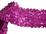 Stretch Sequins Trim- Fuchsia 2""