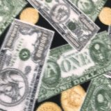 Polar Fleece Print - Money