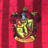 Harry Potter Fleece Fabric - Gryffindor