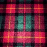 Polar Fleece Print - Red Plaid