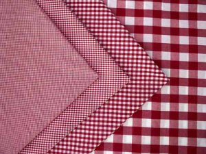 Gingham Check- Red/ White