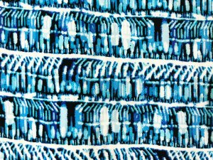 VF203-20 Guadaloupe Waves - Blue and White Rayon Challis Print Fabric